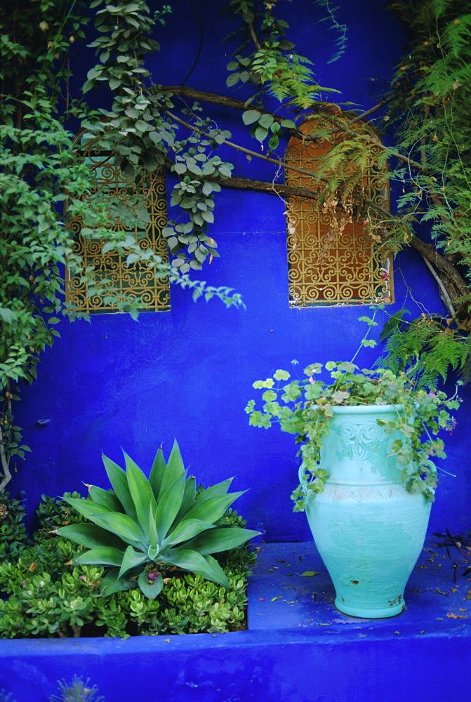 Majorelle Gardens, Marrakesh,  Morocco, North Africa - 712-1333