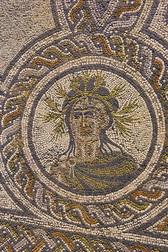 Mosaic, Roman archaeological site, Volubilis, Meknes Region, Morocco, North Africa, Africa