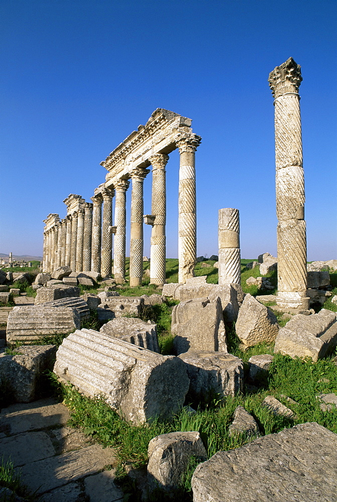 Archaeological site of Apamea, Syria, Middle East