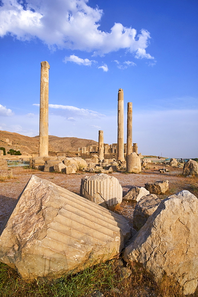 Pillars of the Apadana palace, Persepolis, UNESCO World Heritage Site, Fars Province, Iran, Middle East - 712-2869