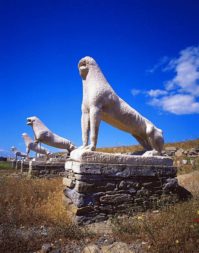 Naxian lions at the Lions Terrace, island of Delos, UNESCO World Heritage Site, Cyclades, Greek Islands, Greece, Europe