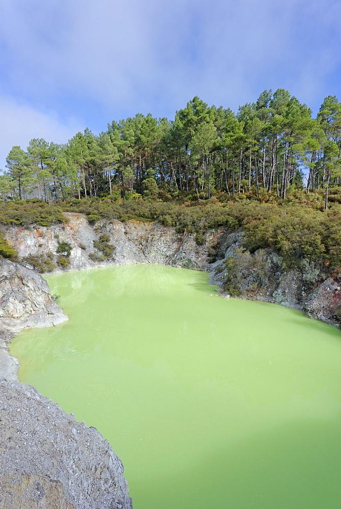 Devil's Bath, Waiotapu Thermal Area, Rotorua, North Island, New Zealand, Pacific