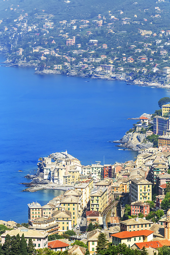 Elevated view of Camogli and Gulf of Paradise, Camogli, Riviera di Levante, Liguria, Italy, Europe