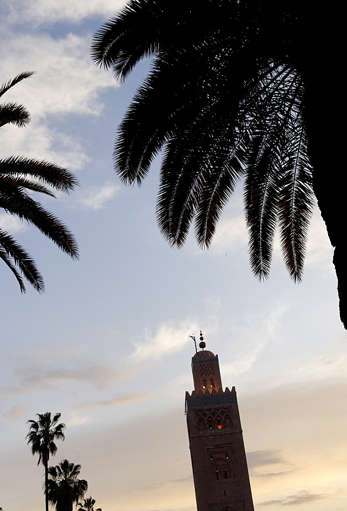 The Koutoubia minaret rises up from the heart of the old medina next to a mosque of the same name, Marrakesh, Morocco, North Africa, Africa - 724-1957