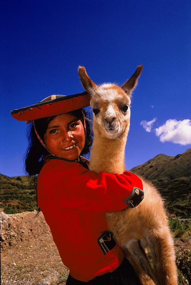 Indian girl in traditional dress with llama (Llama glama), Near Cusco, Peru, South America