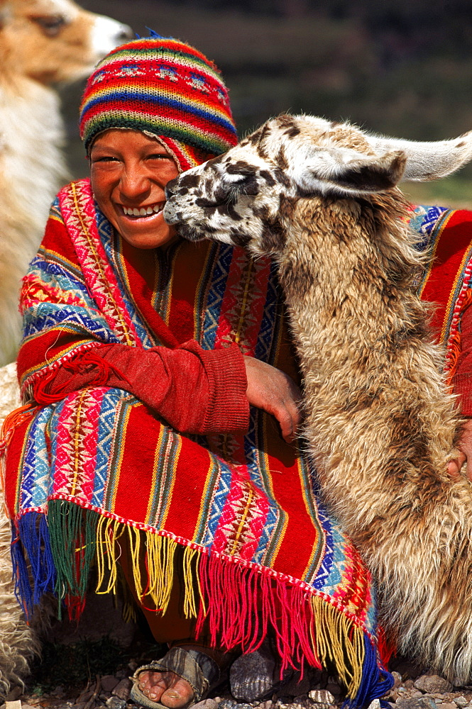 Local Indian with Llama, Cusco, Peru, South America,