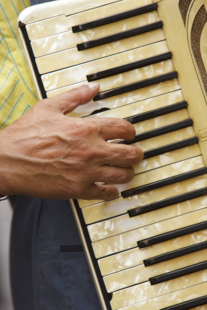 Hand on accordion keyboard, Paris, France, Europe - 728-4938