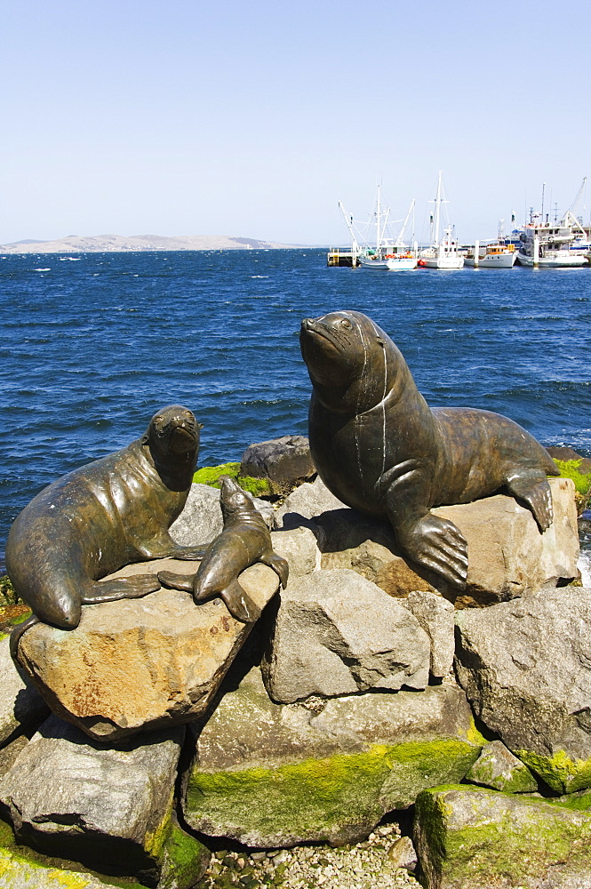 Bronze statues of seals at Salamanca Harbour, Hobart, Tasmania, Australia, Pacific