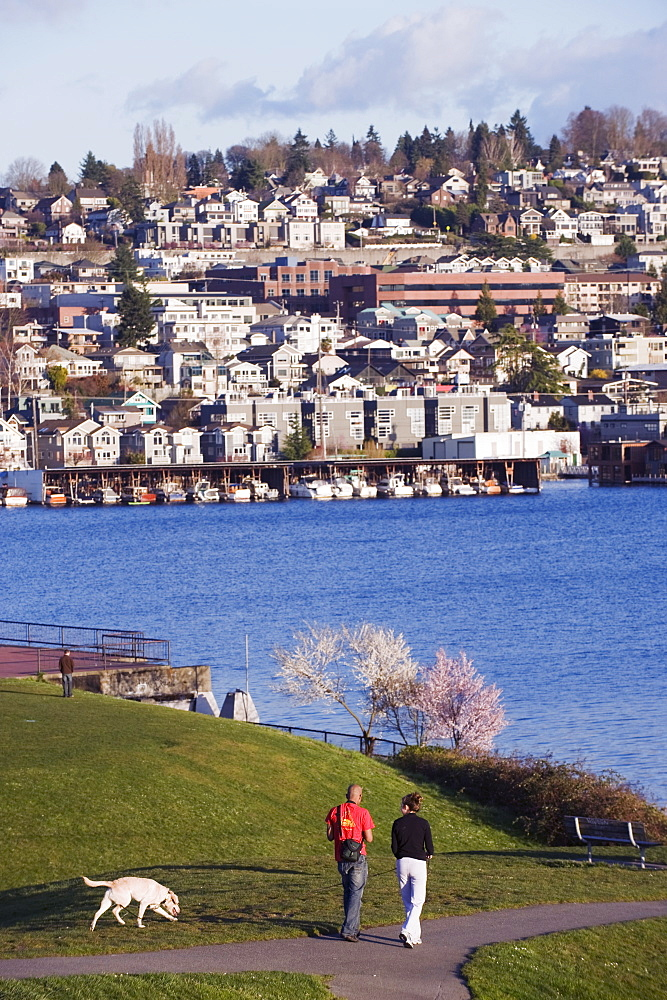 Residential houses on Lake Union from Gas Works Park, Seattle, Washington State, United States of America, North America