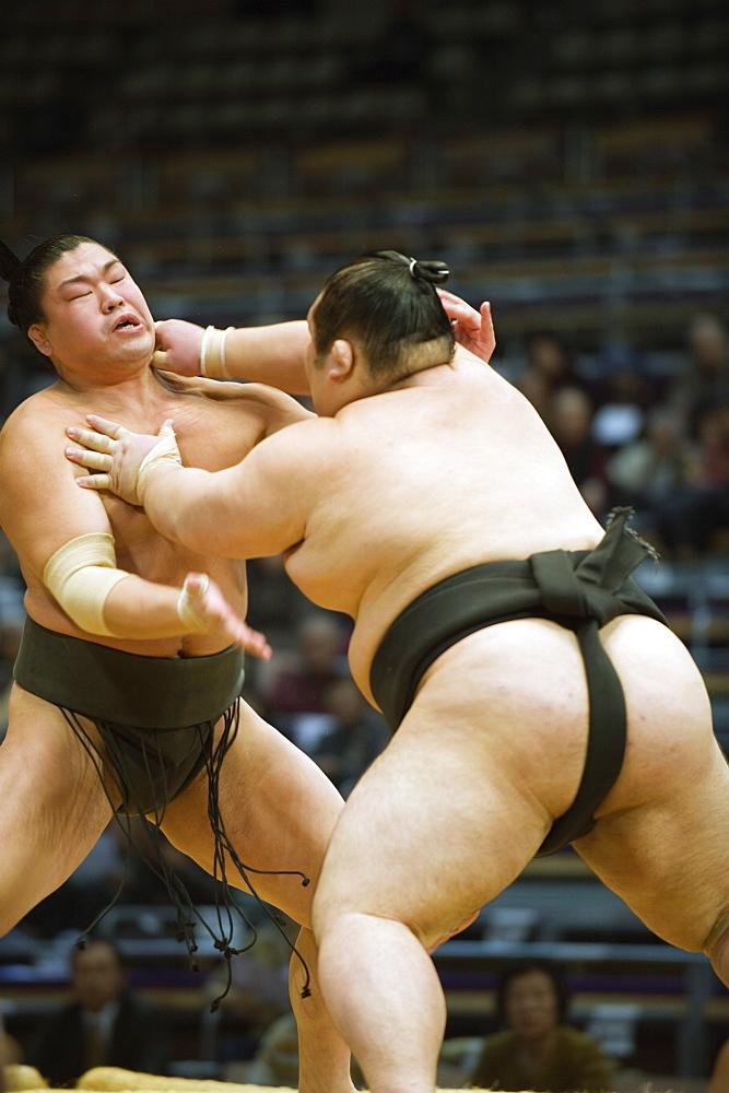 Fukuoka Sumo competition, Kyushu Basho, Fukuoka city, Kyushu, Japan, Asia - 733-3785