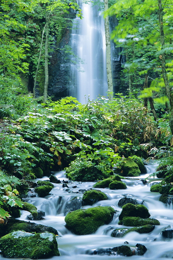 Oirase Valley waterfall, fed by Lake Towada-ko, Aomori, Northern Japan