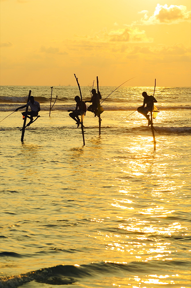 Stilt fishermen, Dalawella, Sri Lanka, Indian Ocean, Asia