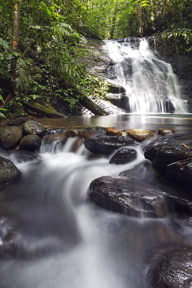 Ula Temburong National Park, Brunei, Borneo, Southeast Asia, Asia