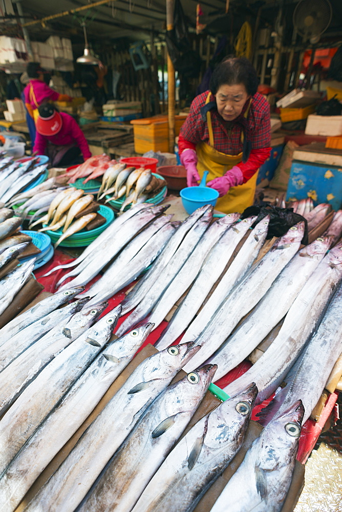 Jagalchi fish market, Busan, South Korea, Asia