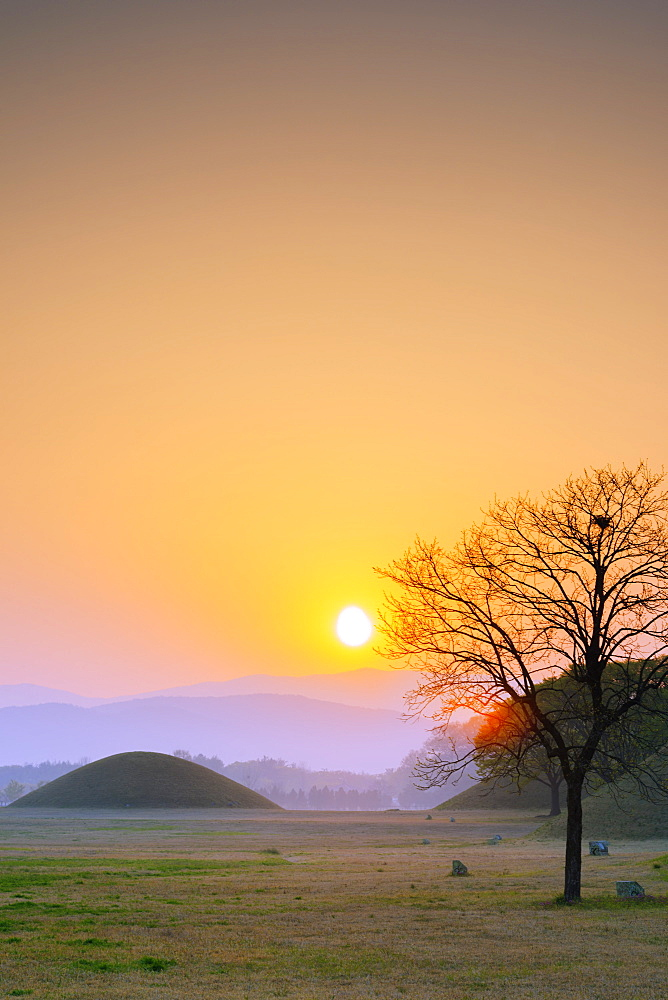 Royal Tombs burial mounds at sunrise, UNESCO World Heritage Site, Gyeongju, Gyeongsangbuk-do, South Korea, Asia