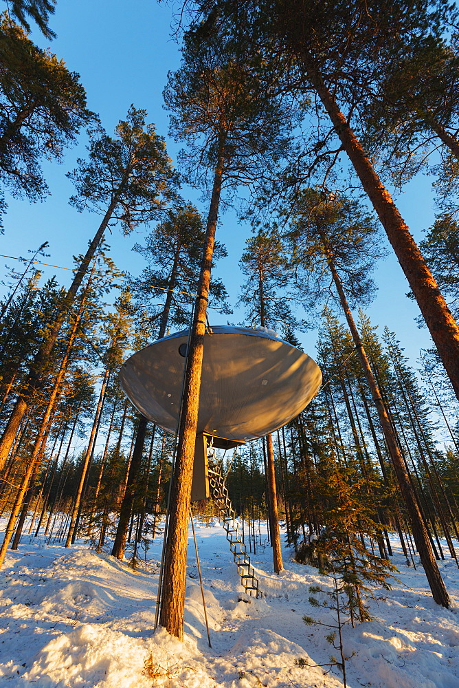 The UFO room, The Tree Hotel, Lapland, Arctic, Sweden, Scandinavia, Europe