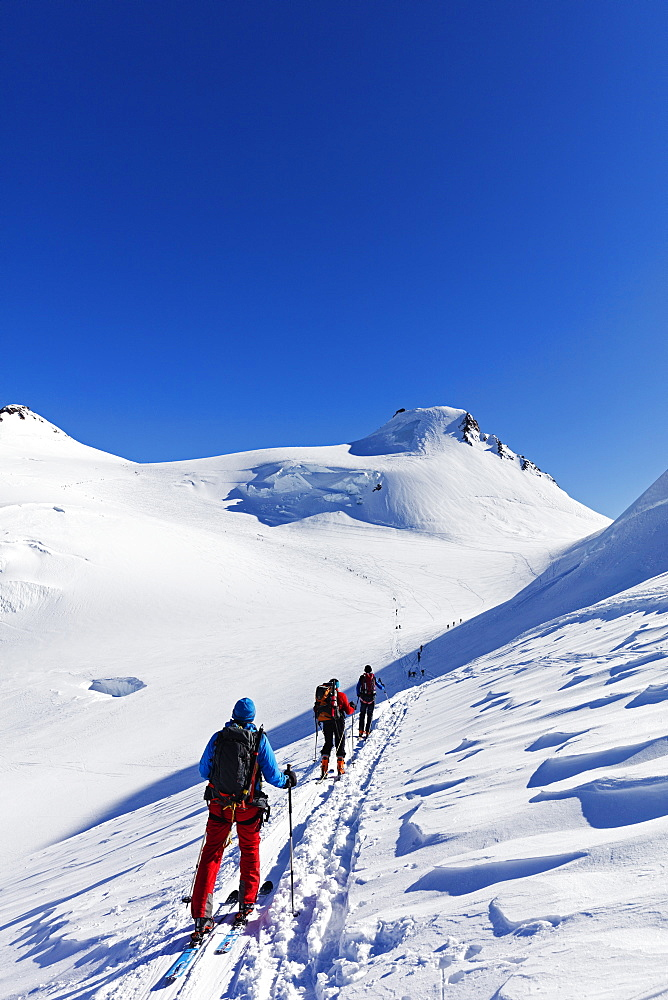 Ski tourers on Monte Rosa, border of Italy and Switzerland, Alps, Europe