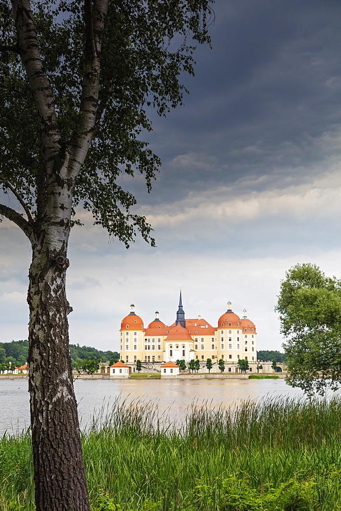 Moritzburg Castle, Saxony, Germany, Europe - 733-8015