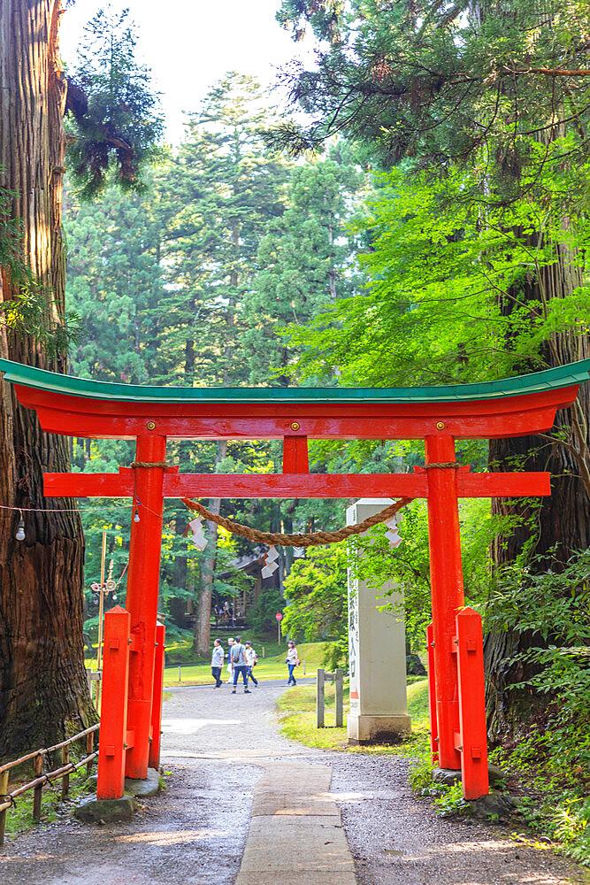 Japan, Honshu, Iwate prefecture, Hiraizumi, Takkoku no iwaya Bishaman do temple, Unesco site, torii gate