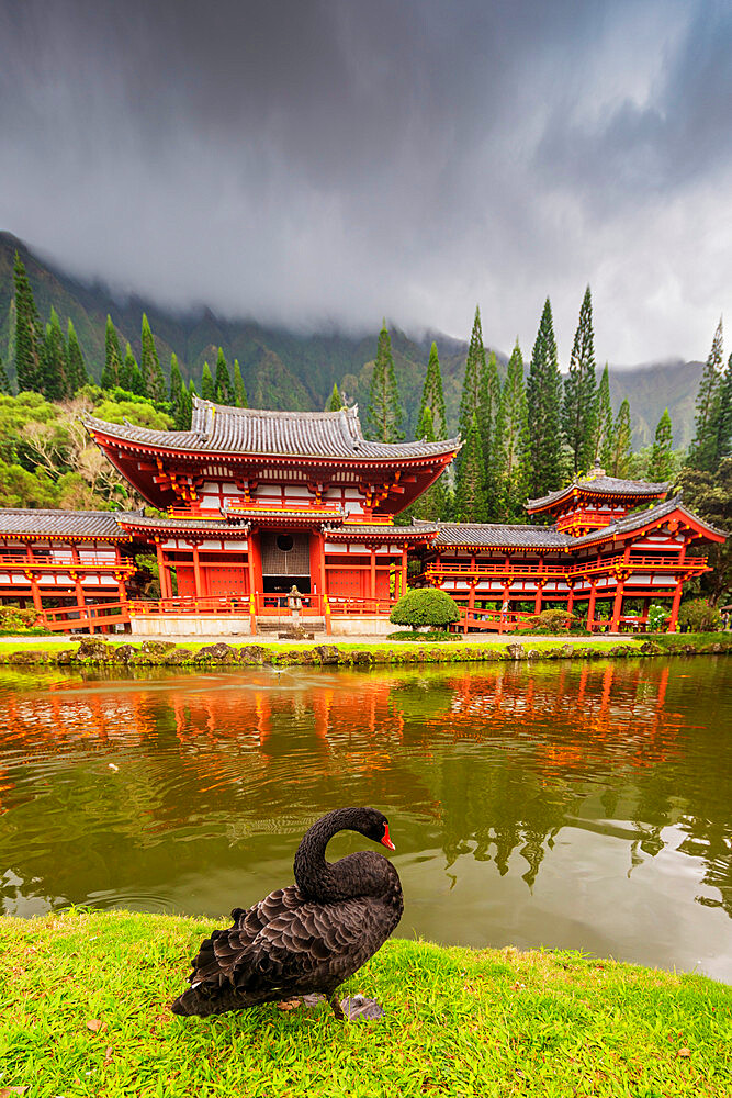 Byodo-in Japanese temple, Oahu Island, Hawaii, United States of America, North America - 733-9007