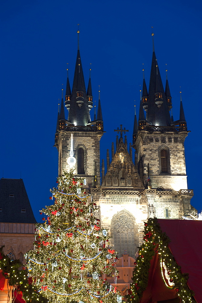 Christmas Tree and Tyn Gothic Church, Old Town Square, UNESCO World Heritage Site, Prague, Czech Republic, Europe  - 737-659