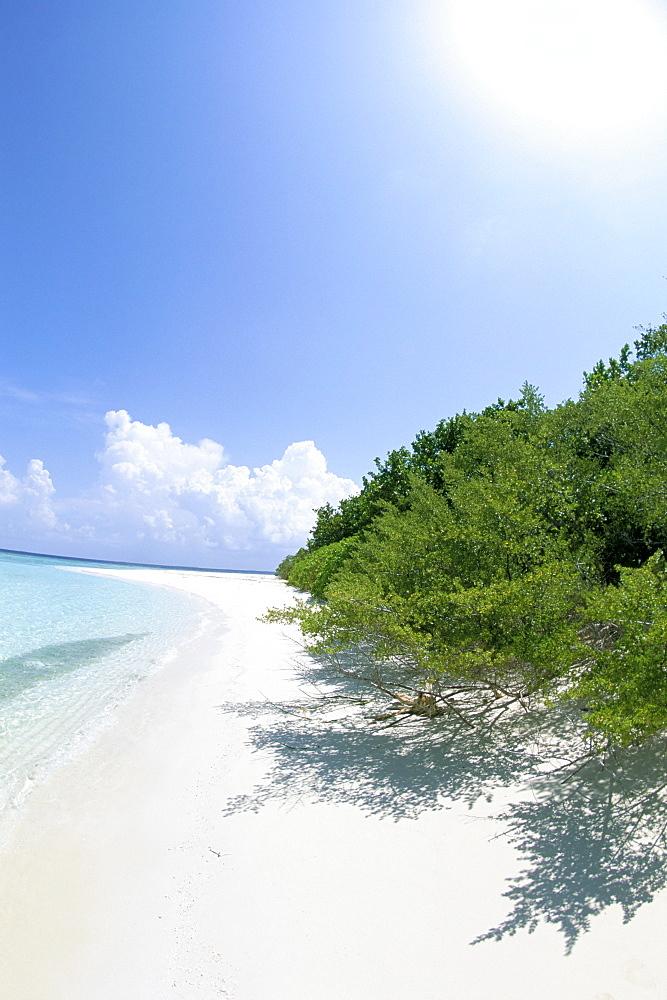 Mendu Island, Baa Atoll, Maldives, Indian Ocean, Asia