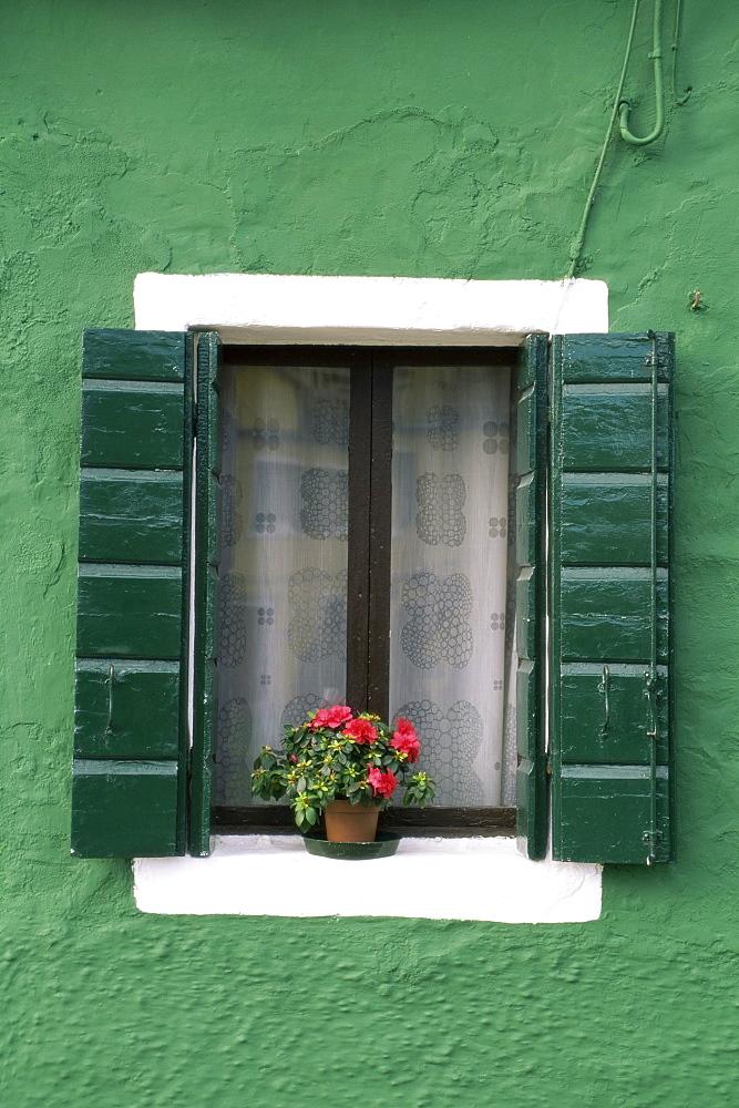 Flower pot on window sill, Burano, Venice, Veneto, Italy, Europe - 741-664