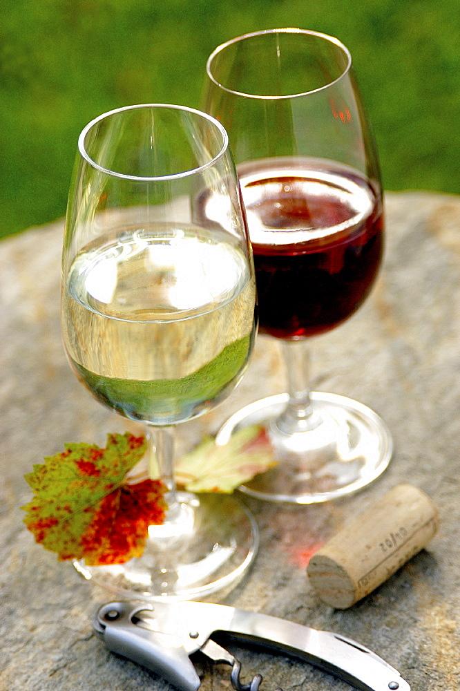 Vermentino e Chianti wine, Tuscany, Italy