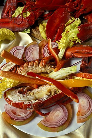 Lupicante (lobster), Isola Del Giglio, Toscana, Tuscany, Italy