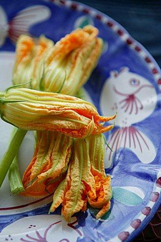 Courgette flowers, Orestorante restaurant, Ponza island, Lazio, Italy