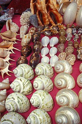 Souvenir stall, Seychelles, Indian Ocean, Africa