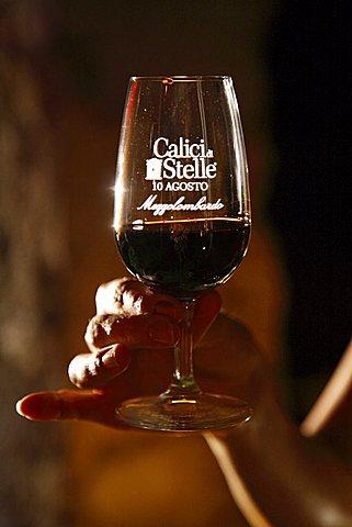 Terodego wine, Calici di Stelle feast, Mezzolombardo, Trentino, Italy