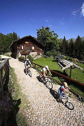 Masi, Palù, Mocheni Valley, Trentino, Italy