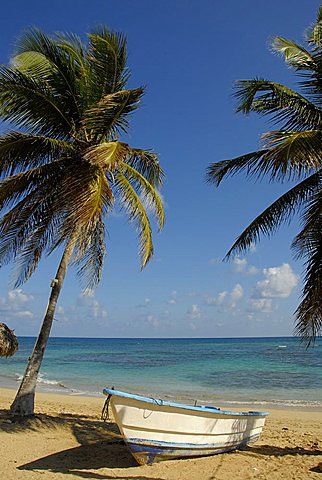 Landscape, Punta Cana, Dominican Republic, West Indies, Central America