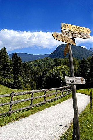 Path near Castlerotto, Alpe di Siusi, altipiano dello Sciliar, Alto Adige, Italy