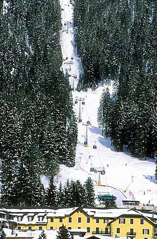 Ski, San Martino di Castrozza, Paneveggio Pale di San Martino Park, Trento province, Trentino, Italy