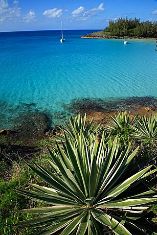 Landscape, Bermuda, Atlantic Ocean, Central America