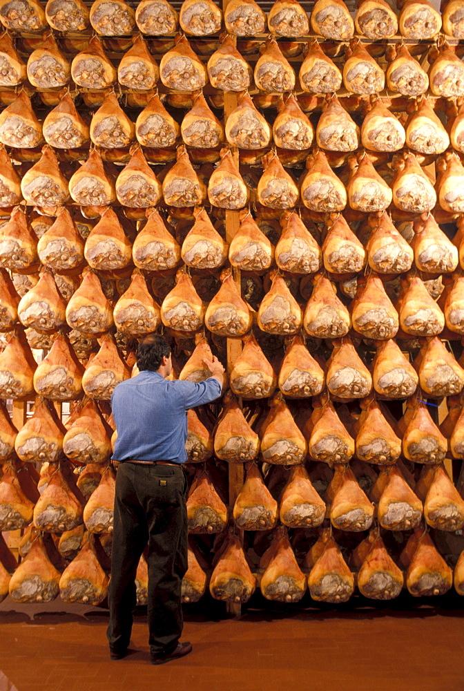 Ham, Parma, Emilia Romagna, Italy - 746-6938
