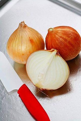 Onions, Italy, Europe