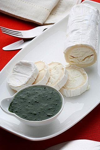 Mint sauce with goat cheese, Italy, Europe