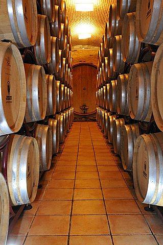 Cantina di Jerzu cellar, Jerzu, Ogliastra, Sardinia, Italy, Europe