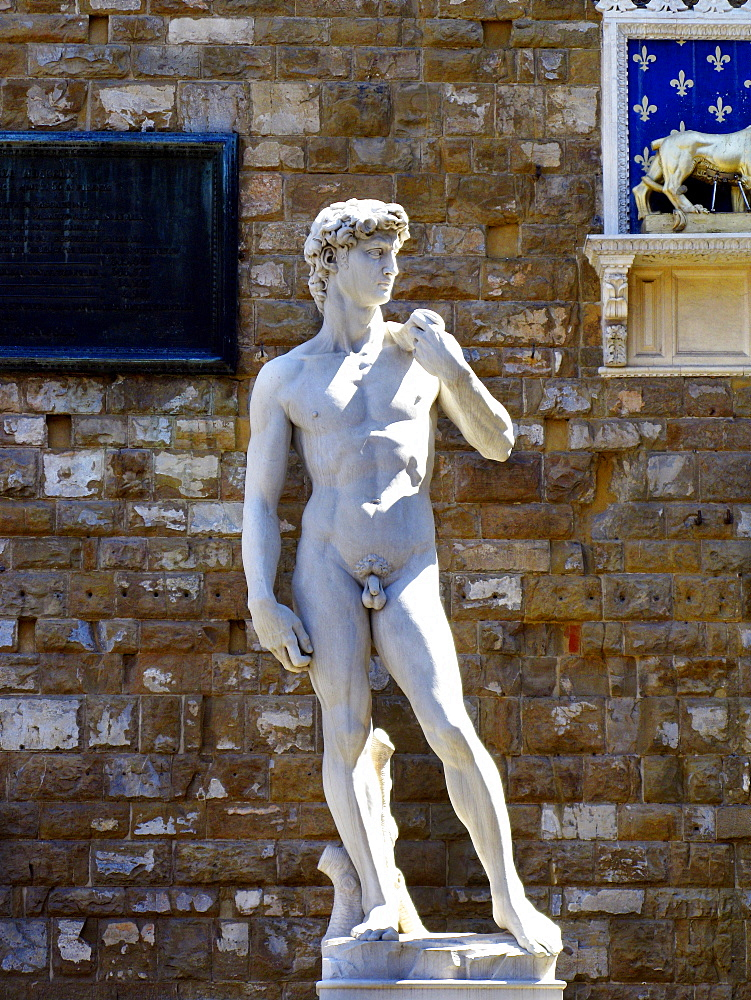 Piazza della Signoria square, copy of David of Michelangiolo, Florence, Tuscany, Italy, Europe, UNESCO World Heritage Site