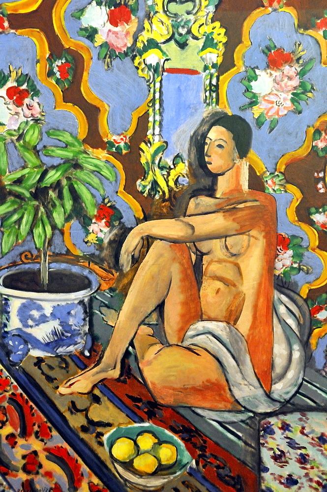 Decorative Figure on an Ornamental Background, Henri Matisse, Musee National d'Art Moderne, Centre Georges Pompidou, Beaubourg, Paris, Ile-de-France, France, Europe