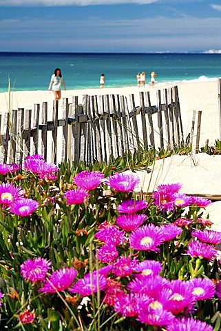 Beach, Algarve, Portugal, Europe