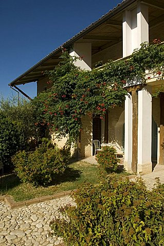 Agriturismo Subretia, Montefalco, Umbria, Italy, Europe