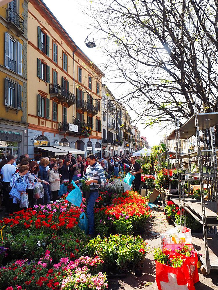 Fiori sul Naviglio, Sunday garden and flower's market, Naviglio Grande, Milan, Lombardy, Italy, Europe
