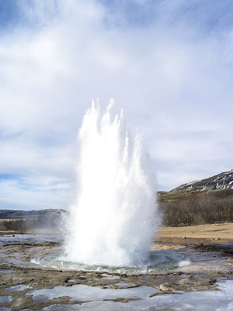 The geothermal area in Haukadalur during winter, part of the tourist route Golden Circle. The geysir Strokkur. europe, northern europe, scandinavia, iceland,  March