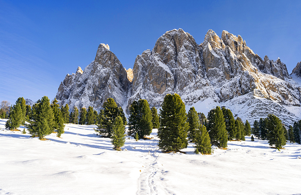 Geisler Mountain Range or Gruppo delle Odle Mountain Range in the valley of Villnoess in South Tyrol (alto adige) after a snowstorm in late fall. The Geisler Mtn. Range is part of the UNESCO world heritage dolomites. Europe, Central Europe, Italy, November