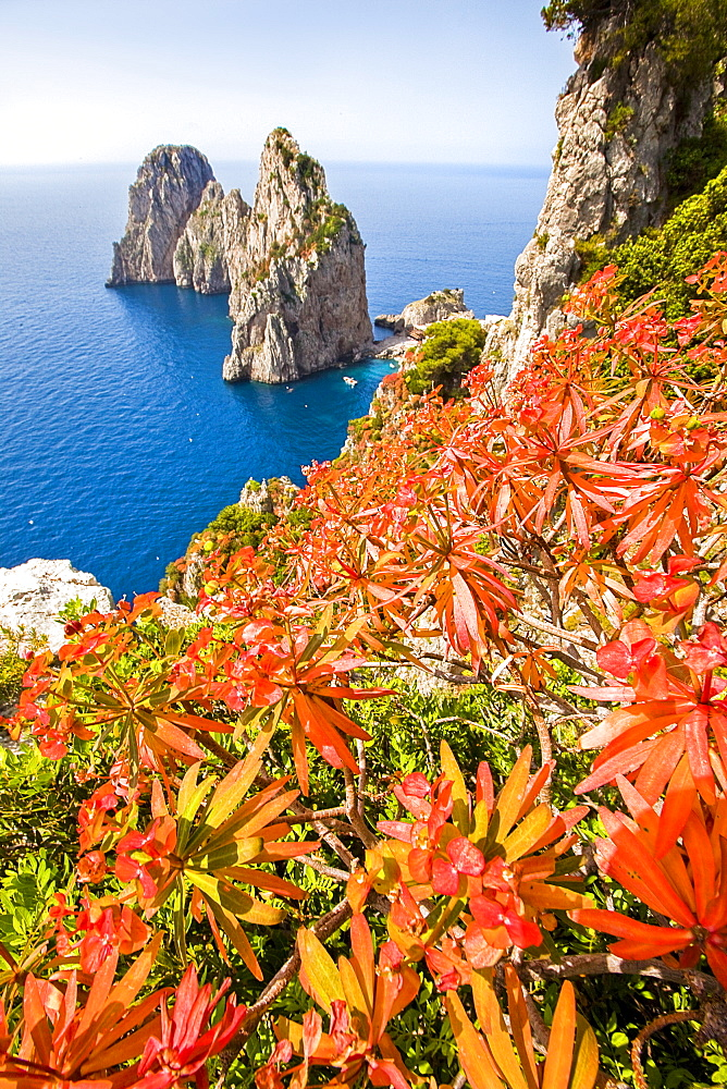 View at sea and Faraglioni rocks in the sunlight, Capri, Italy, Europe - 746-88513