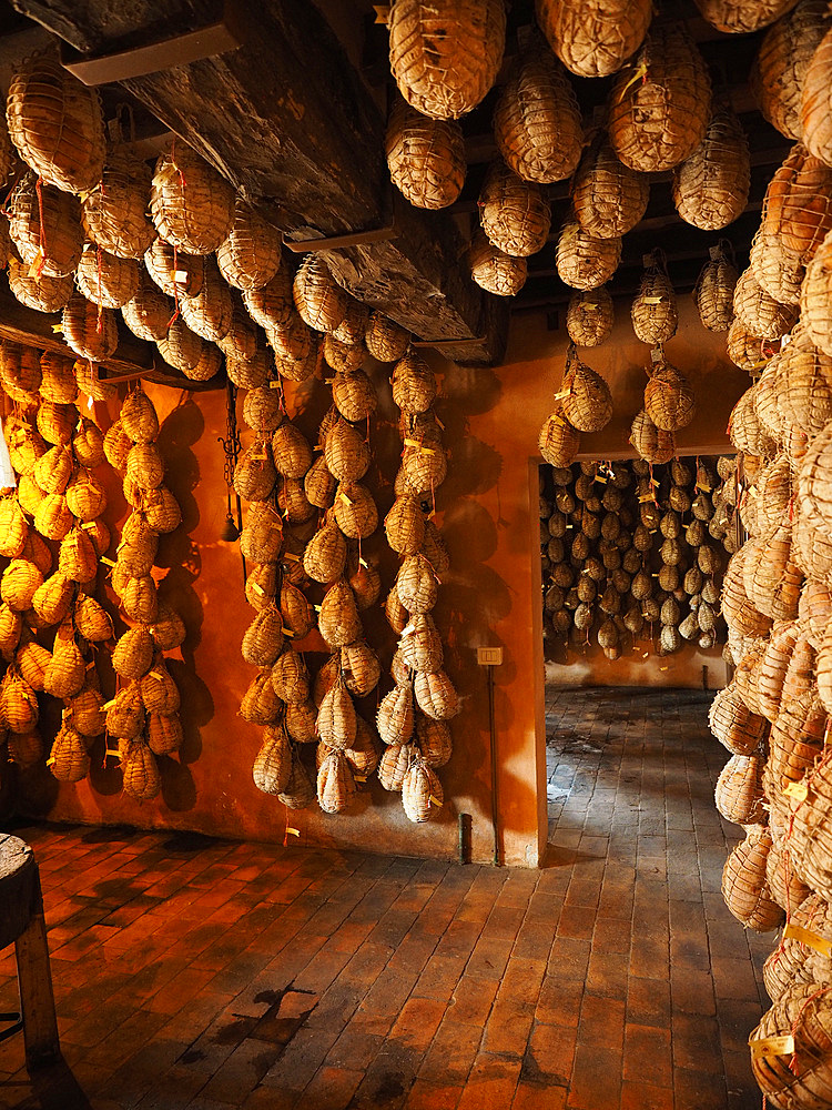 Dallatana cellars where the precious culatello is seasoned, similar to cured ham but made from the filet or loin of the hind leg, Roncole Verdi, Busseto, Emilia Romagna, Italy, Europe
